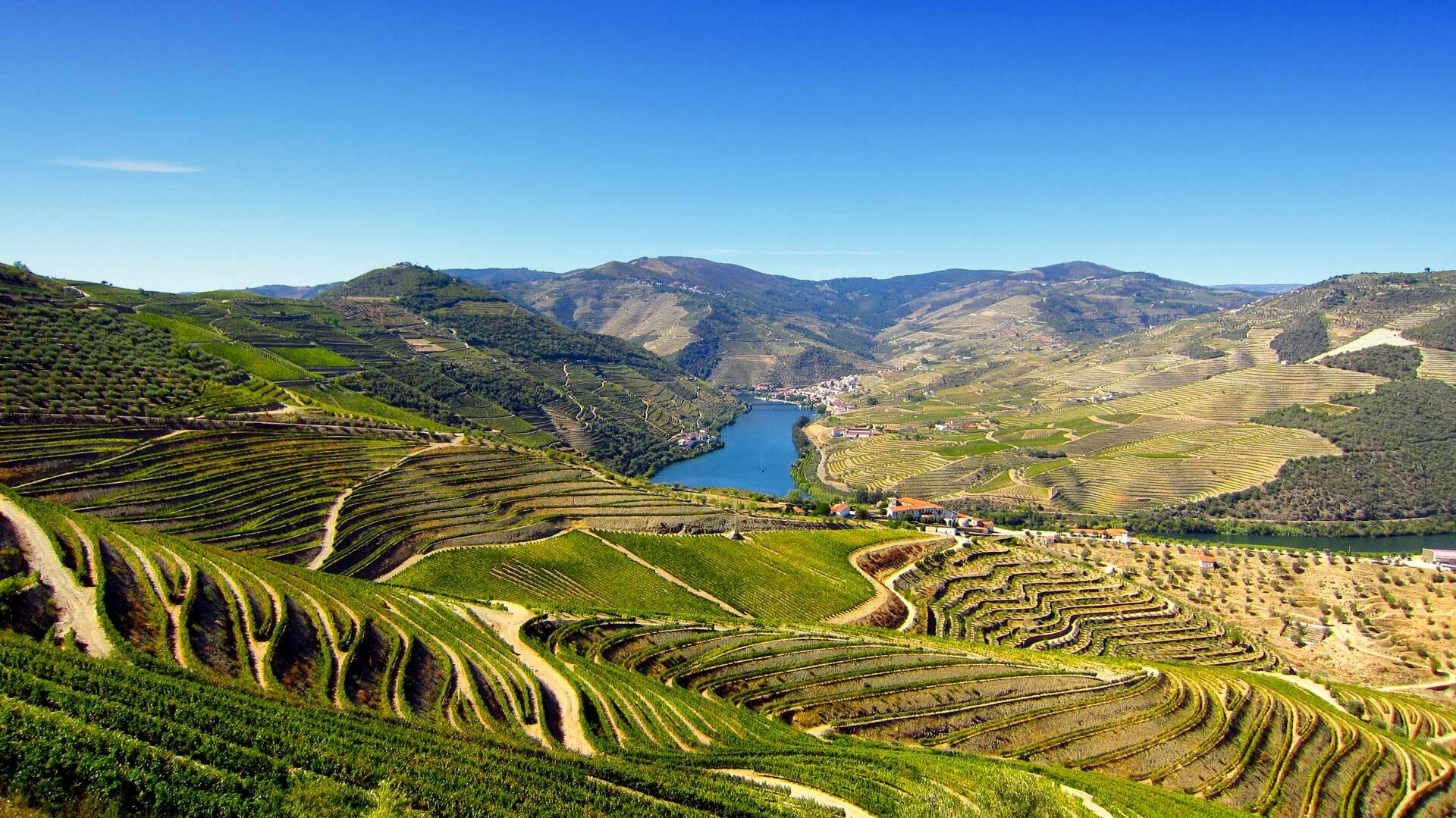 portugal-region-du-douro